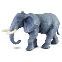 COLLECTA African Elephant (xl) 88025